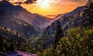 Beautiful photo of Great Smoky Mountains with orange sunset over mountains covered with evergreen trees.